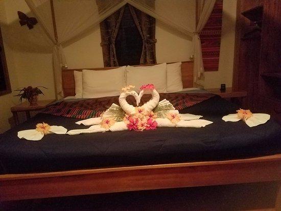 Mariposa Jungle Lodge Picture