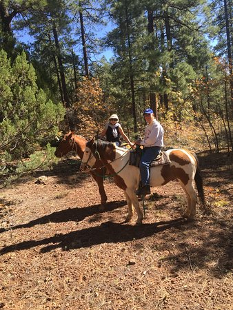 Pinetop-Lakeside, AZ: Good horses Great Ride