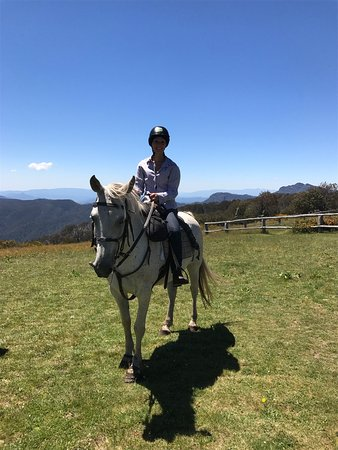 High Country Horses - Day Tours