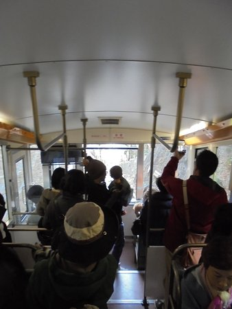 Mt. Takao Cable Car : 車内の様子