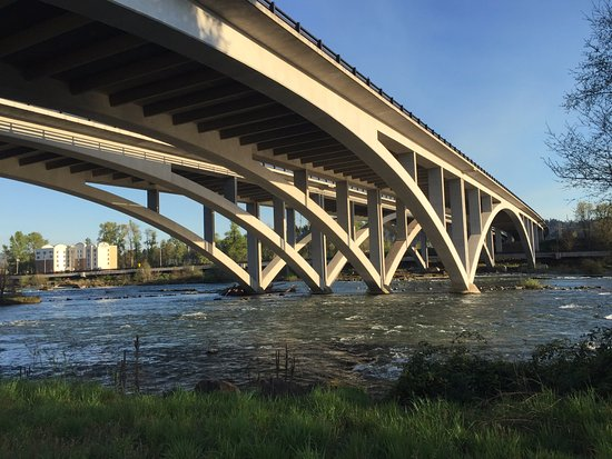 Willamette River bike trail: View of the I-5 freeway bridge (Springfield portion of the Willamette River bike path)