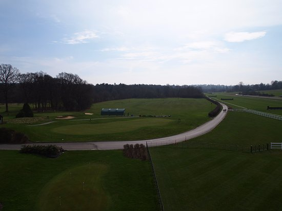 Lingfield Park Marriott Hotel & Country Club Photo