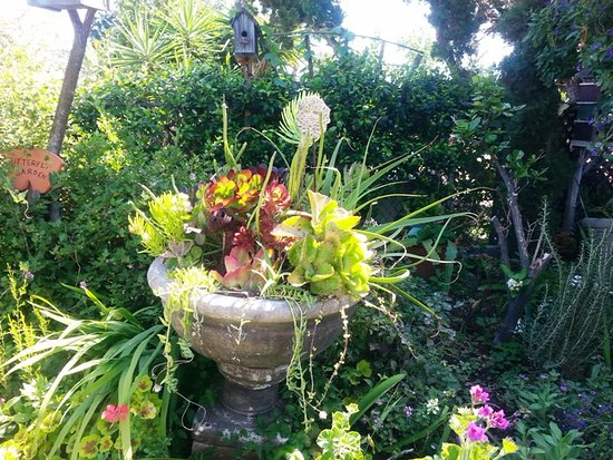 El Cajon, CA: Garden on Garden Tour