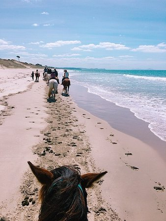 Wellsford, Nueva Zelanda: Riding along the beach