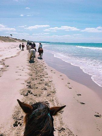 Wellsford, Νέα Ζηλανδία: Riding along the beach