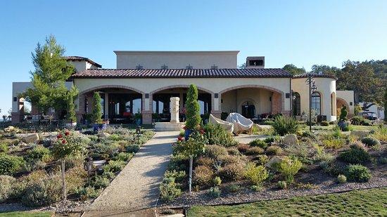 DAOU Vineyards: Superb vineyard !