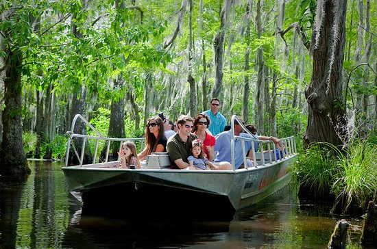 New Orleans Swamp and Bayou Boat Tour With Transport