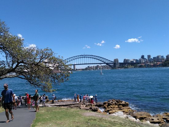 The Opera House to the Botanic Gardens Walk: View from Mrs Macquarie's chair