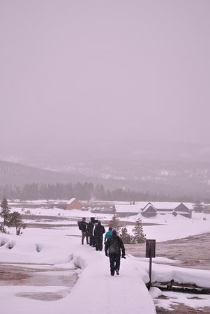 Wildlife Expeditions of Teton Science Schools: Walking around the geysers. Very icy, but fun!