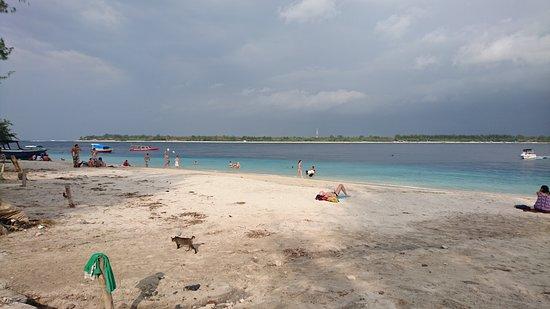 Gili Islands, Indonésia: DSC_3892_large.jpg