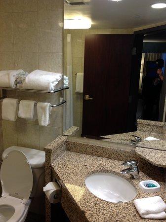 Drury Inn & Suites Detroit Troy: BR