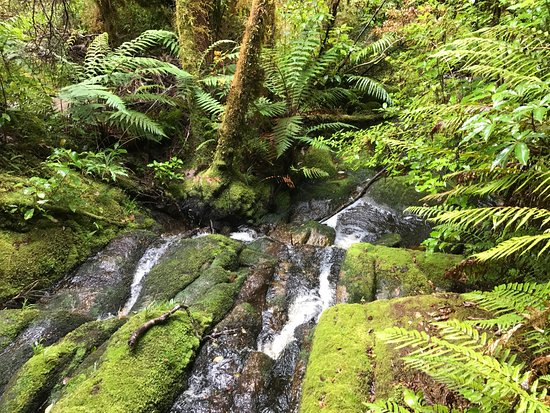 Karamea, New Zealand: photo1.jpg
