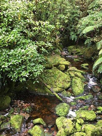 Karamea, New Zealand: photo3.jpg