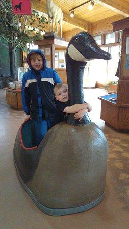 Bay Beach Wildlife Sanctuary: Riding the Goose