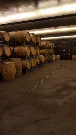 Moorilla Estate Winery: FB_IMG_1489469703422_large.jpg