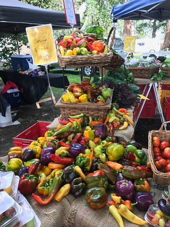 Hawkes Bay Farmers' Market: Lots of capsicums.