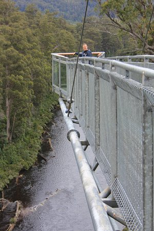 Tahune Forest AirWalk: Hope you are not afraid of heights!