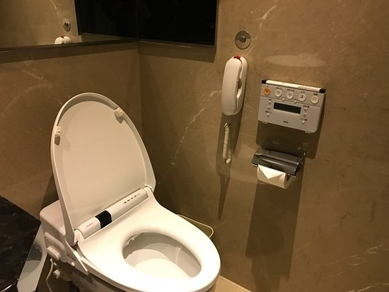 Japanese Style TOTO Toilet bowl with controls on the left side ...
