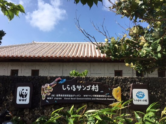 ‪WWF Japan Coral Reef Conservation and Research Center‬