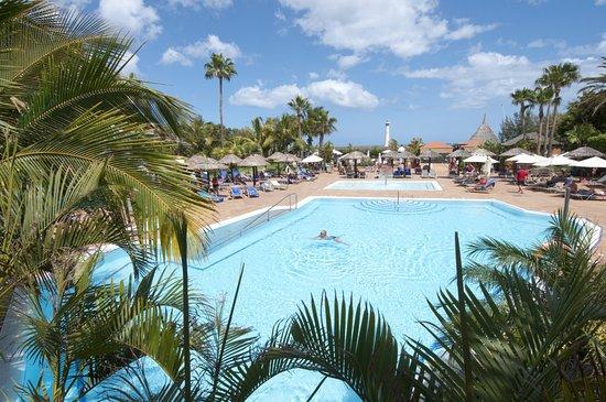 Ifa Altamarena Hotel Reviews
