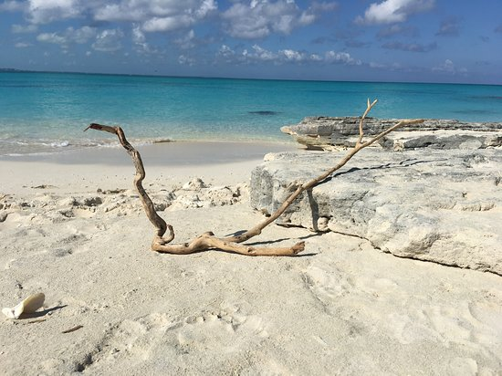 Pelican Beach - South Water Caye Picture