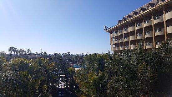 Royal Dragon Hotel: 20170129_124018_large.jpg