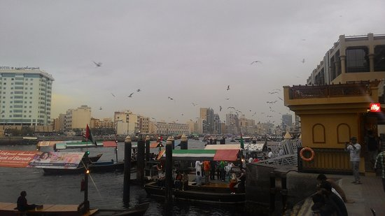 Bur Dubai Abra Dock : More seagulls and some boats which take you to the other side of creek
