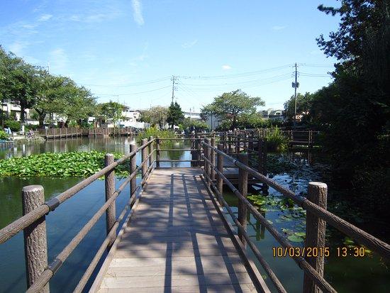 Shirahataike Park