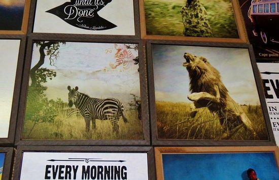 Hout Bay, جنوب أفريقيا: Printed Photos