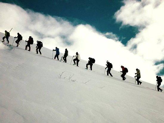 Olympus Path Trekking Company