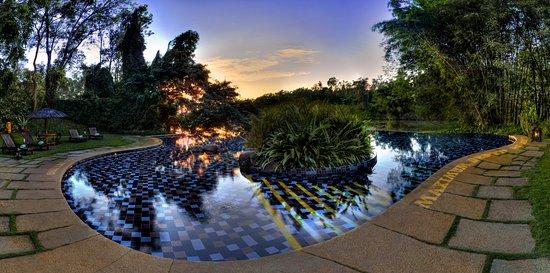 Siddapura, India: Infinity Pool