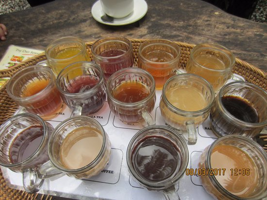 Lodtunduh, Indonesien: All these are for tasting FOC