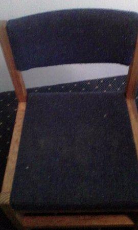 Black Bear Lodge: Dinning chair #1