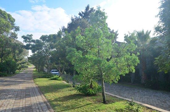 Sidbury, South Africa: Out side Pollards Inn