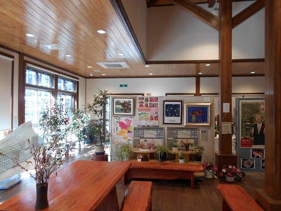 Kurume World Camellia Museum