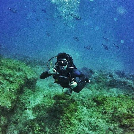 LJ Diving Tenerife: Good times!