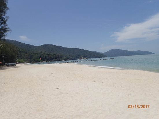 Batu Ferringhi Beach Looks Good But A Jellyfish Day