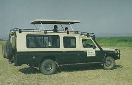 Raylenne Tours and Safaris