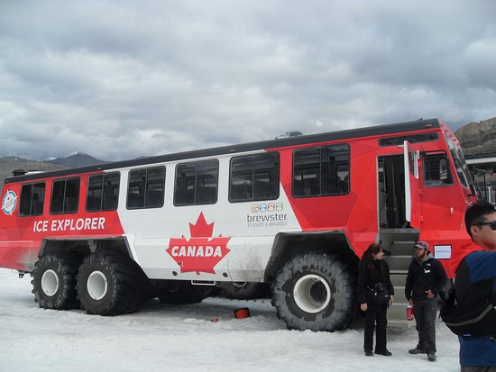 Columbia Icefield Glacier Discovery Centre: Ice vehicle on the glacier
