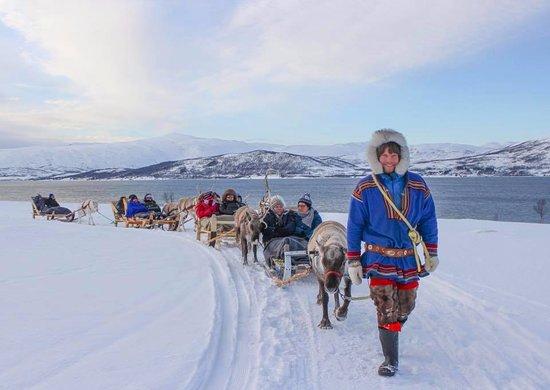 北极驯鹿体验之旅-一日游