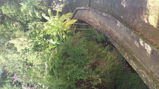 Estacao Ecologica do Tripui: Estação Ecológica do Tripuí