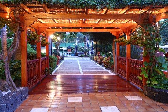Bahia Principe San Felipe: Garden