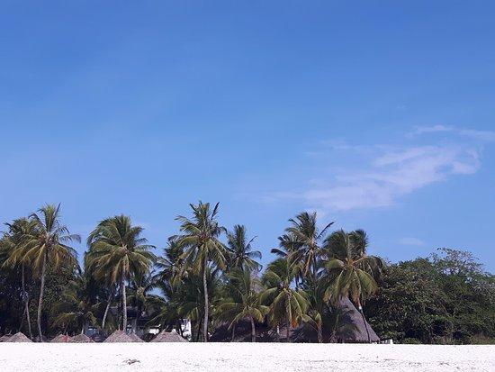 Pinewood Beach Resort & Spa: J'ai pris cette photo de la plage qui se situe à l'hôtel