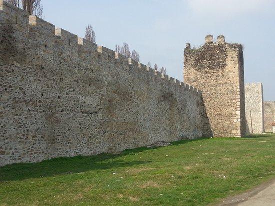 Smederevo Fortress: 20170314_114930_large.jpg
