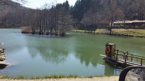 Ristorante lago dei pontini bagno di romagna omd men om restauranger tripadvisor - Ristorante del lago bagno di romagna ...
