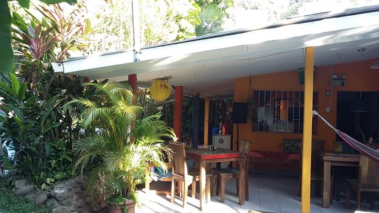 Buddha House Boutique Hostel: 20170313_072900_large.jpg