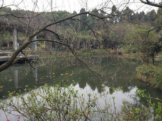 Botanical Garden of Chinese Academy of Sciences: photo2.jpg