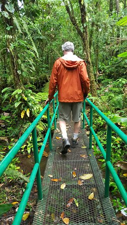 Rio Celeste Hideaway Hotel: Trail to the river