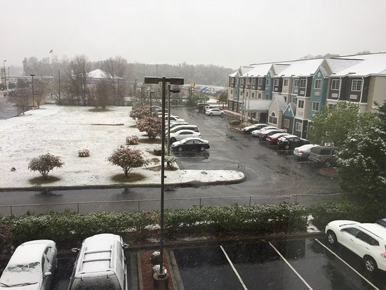 Florence, Carolina del Sur: photo0.jpg