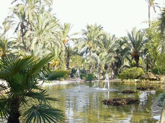 Huerto del Cura - Picture of Huerto Del Cura Jardin Artistico Nacional, Elche...